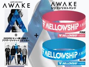 AWAKE CD+シリコンリストバンドセット